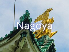 hisgo Nagoya
