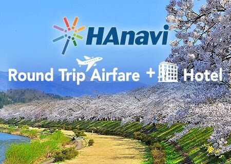 Japan Domestic Flight + Hotel from $99